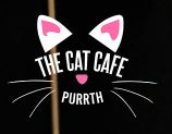 Cat Cafe Perth.JPG